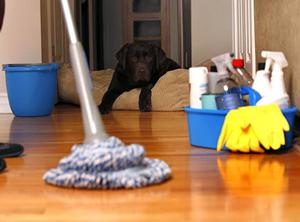 Прибирання у помешканні: кілька порад