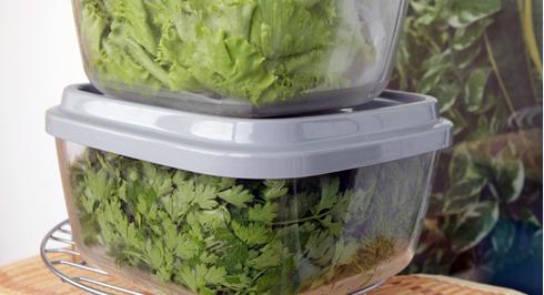 Зберігати зелень можна у холодильнику, у спеціальних пластикових ємностях