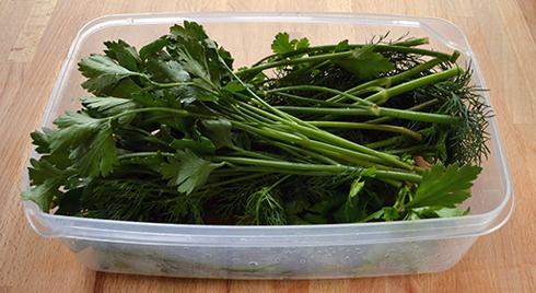 Зберігати зелені овочі потрібно в пластикових або скляних контейнерах з кришкою