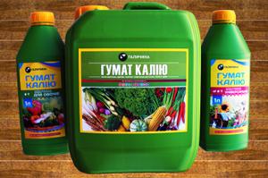 Гумат калію: секрет високих урожаїв овочів та фруктів
