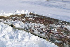 Як почистити килим снігом