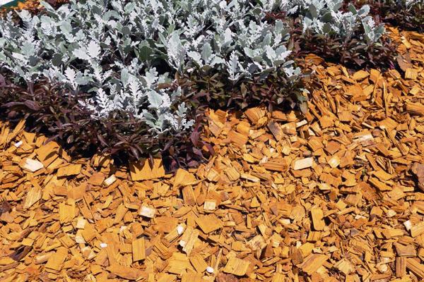 Грядки які будуть мульчовані, не дадуть шансів бур'янам - вони пригнічують ріст надземної частини бур'янів, послаблюють їх кореневу систему, перешкоджають розмноженню (насінням) однорічних рослин.